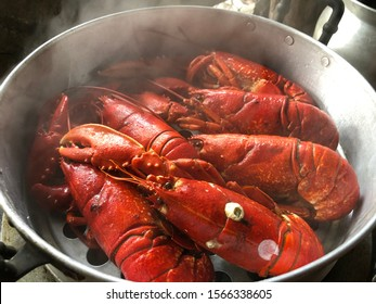 Big red lobsters cooking in silver pot hot steam with smoke