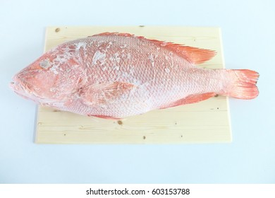 Big Red Snapper Frozen Fish Seafood On Cutter Board