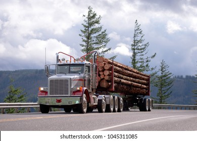 Big rig American idol day cab powerful semi truck with specialized semi trailer transporting long cut off logs on the road in Columbia Gorge area