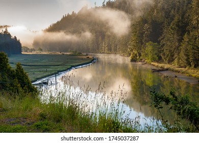 Big River on a foggy morning just upstream (east) of Mendocino, CA.