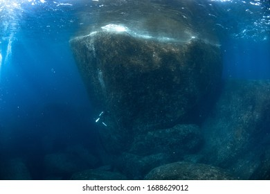 Big rock and coral reef