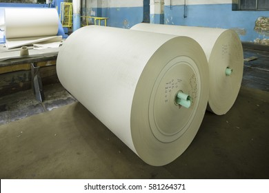 Big Rolls of paper. Paper production. Paper factory. Cardboard factory. paper Recycling