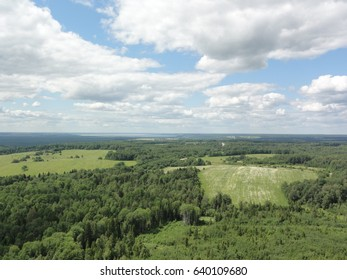 Big russian green filed and blue sky with white clouds