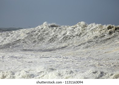 Big sea wave in a stormy but sunny morning. Northern portuguese coast.