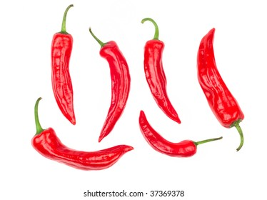 Big set of Chilli peppers isolated on white background. Extremely spicy ingredient for dishes such as pizza pepperoni, spicy Mexican dishes and more.