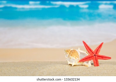 Big sink and starfishes on sea sand