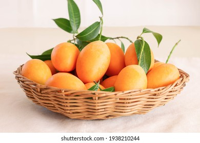 Big size fresh ripe organic sweet yellow marian plum or plum mango in wood basket on table. Tropical exotic summer fruit call Mayongchid or Maprang in Thailand with sweet and sour taste.