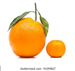 Big and small orange on white background