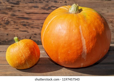 big and small ripe pumpkin on wooden background