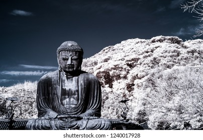 Big statue called Daibutsu  was capture by infrared camera to show the details and create different view, the photo was taken in December 2017 at Kamakura Kanagawa Japan