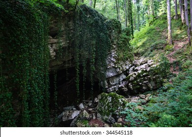 big stone and mysterious cave entrance in the forest covered with liana and trees in national park in Sochi region Russia