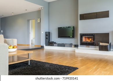 Big stylish living room with fireplace and wooden parquet