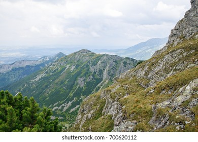 Big Tatry at Poland and Slovakia. Wild animals, beutiful nature, lakes and rivers. 2017