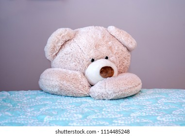 Big teddy bear kneels beside the bed for evening prayers