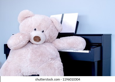 a big teddy bear is a little embarrassed as he sits by his piano.. he forgot how to play!