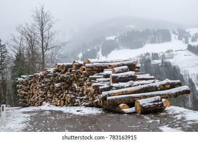 big timber heaps in winter