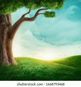 Großer Baum auf der Wiese. Bild mit Kopienraum