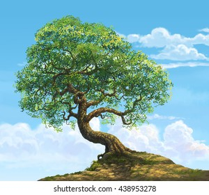 a big tree on hill