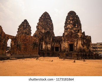 big troop of monkeys live in Phra Prang Sam Yod temple in Lopburi, Thailand