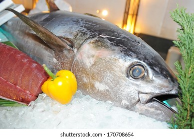 big tuna on ice