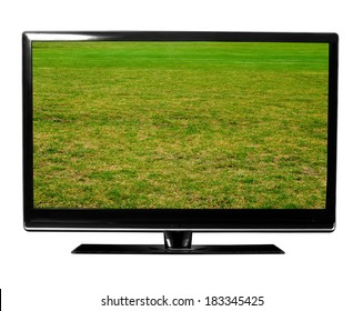 big tv with green lawn