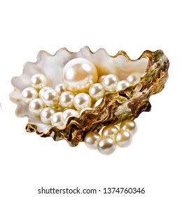 big white pearls in a real shell isolated on white background