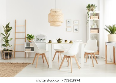 Big wicker lampshade hanging above table in white dining room interior with potted plants and plastic chairs