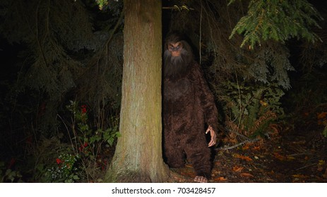 Bigfoot, Big Foot, Sasquatch, tree, forest, berries, dark, night, woods, big hairy, stare