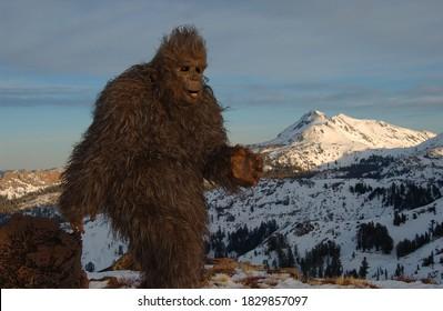 bigfoot sasquatch walking in the mountains.
