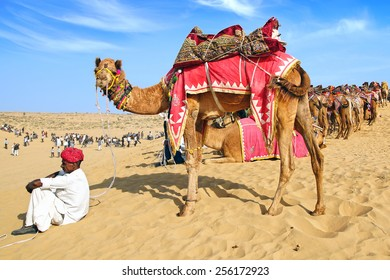 BIKANER, INDIA - JANUARY 09, 2012: Cameleer with camel at the dunes during the festival. Bikaner Camel Festival is an annual festival dedicated to the surly, hardy animal.