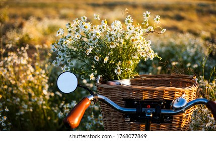 bike with basket with flowers against daisy field  background