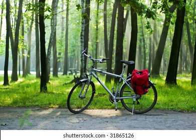 bike in a forest