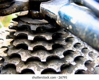 Bike gears after a ride.