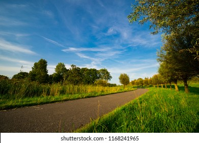 bike and hiking path in national park Biesbosch, Dordrecht, The Netherlands