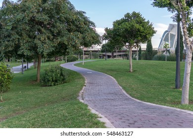 Bike lane between trees in Jardin del Turia in Valencia Spain. Tile cycleway on the grass, bikeway for cyclists only