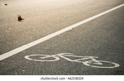 bike lane with blowed leaf in evening sunlight