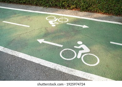 Bike lane signs painted onto a green bike lane. Bicycle lane in the park.