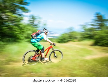 Bike panning shot in the forest. Captured in summer.