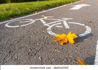 Bike path in the autumn Park. A symbol of cycle paths on the pavement