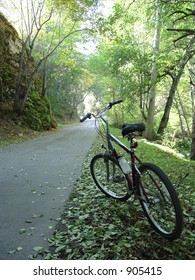 Bike Path into Light