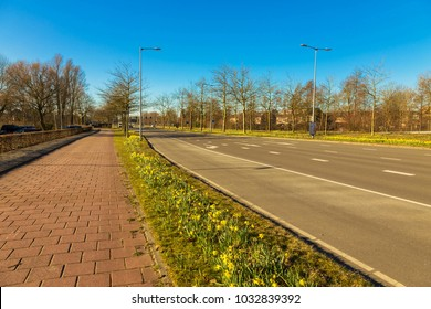 Bike path near the highway. On the roadside flowers bloom yellow daffodils. Spring trip, spring road. Typical Dutch city landscape.