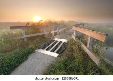 bike path and wooden bridge in Dutch farmland