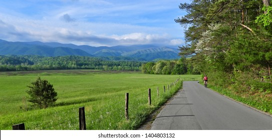 Bike Riding in Cades Cove, Great Smoky Mountain National Parki