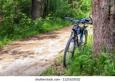 bike, walk in the forest