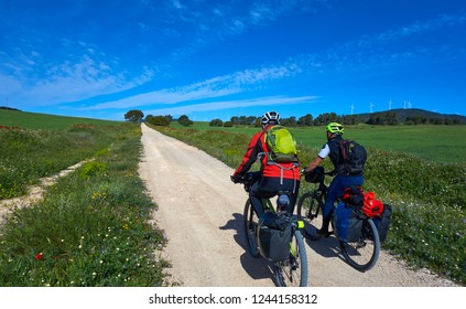 Biker by Camino de Santiago in bicycle at Saint James Way of Levante of Spain