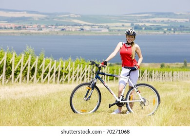 biker near vineyard, Nove Mlyny dam, Czech Republic