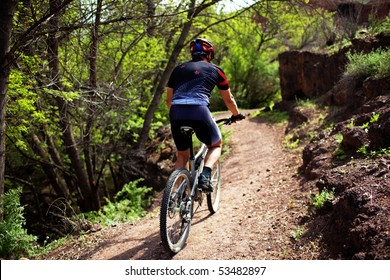Biker on pathway in mountain forest