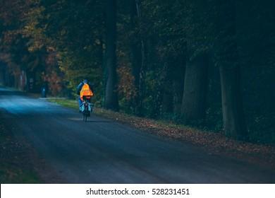 Biker with safety vest on road in autumn forest at dusk. Exel. Achterhoek. Gelderland. The Netherlands.