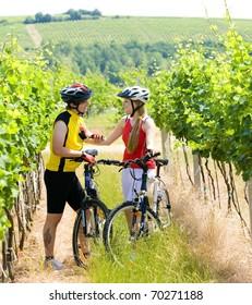 bikers in vineyard, Czech Republic