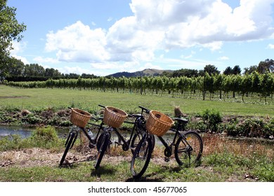 Bikes in vineyard
